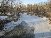 seine river in spring